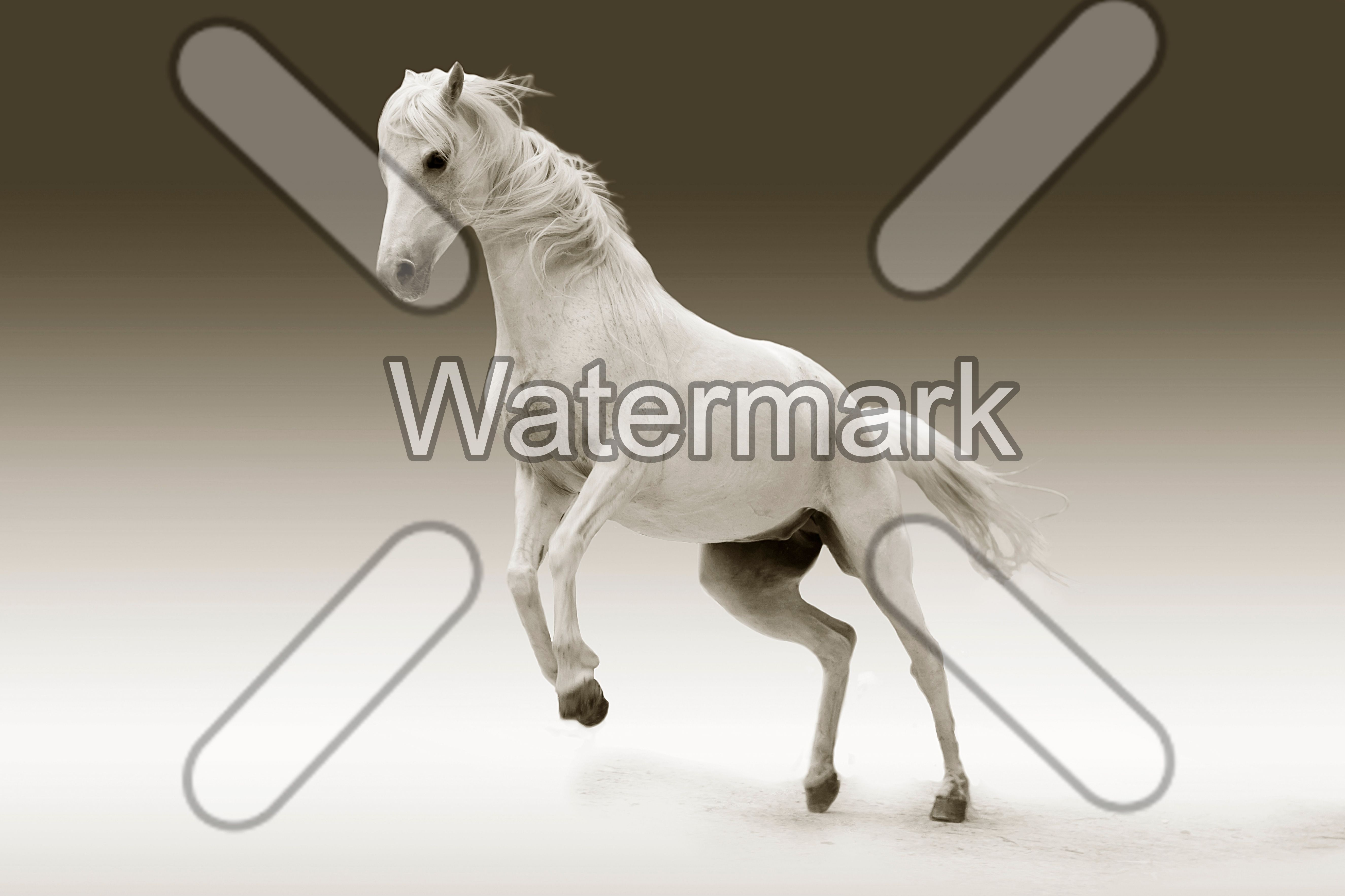 Automatic watermark position.